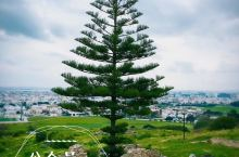 突尼斯·突尼斯市·迦太基遗址