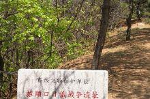 """""""色彩斑斓,花团锦簇的五月,浪漫滨城行——203高地"""""""