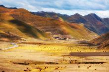 若尔盖:草原上的黄河曲线,还有佛陀的世界