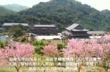 翁源东华山风景区,深山里藏着佛缘,108罗汉雕塑大道,原始石