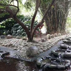 府南河活水公园旅游景点攻略图