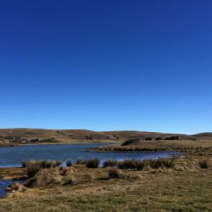 大山包黑颈鹤自然保护区旅游景点攻略图