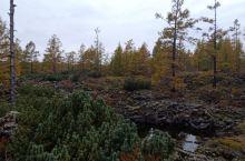 阿尔山火山岩,石塘林,还有路边的小松鼠