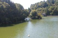 千岛湖游记