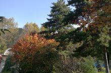 北山国家森林公园