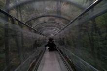 宽甸天华山的玻璃滑梯,很好玩!!!