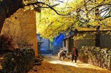 云南最惊艳的秋色在这,比香格里拉更静谧梦幻,往返机票低至¥700+