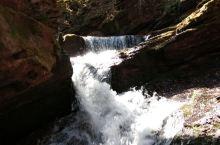 银川国家森林公园