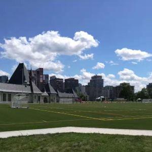 麦吉尔大学旅游景点攻略图