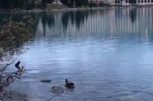 加拿大露易丝湖和费尔蒙酒店🏨
