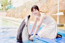 在三亚亚特兰蒂斯,和海豚海狮亲密接吻