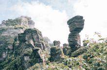 国内网红经典⛰️屹立10亿年不倒的梵净山的蘑菇石