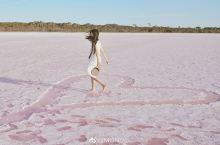 #元旦去哪儿玩#离墨尔本最近的粉红湖,过一个粉红泡泡的跨年夜