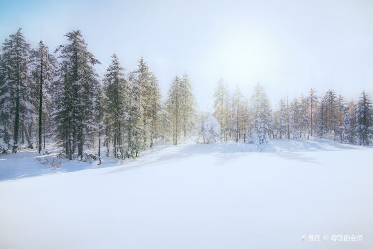 펑황산 국가삼림공원4