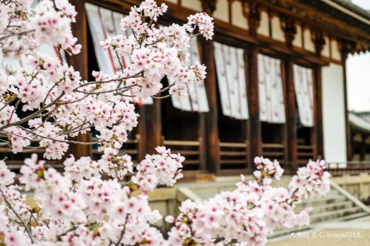Kyoto Imperial Palace1
