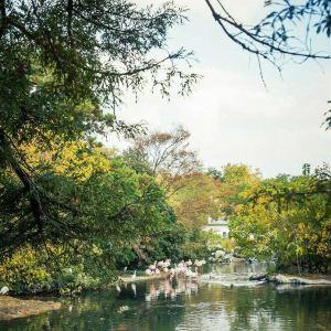金头公园旅游景点攻略图