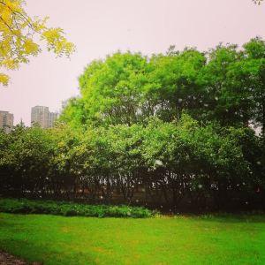 南翠屏公园旅游景点攻略图