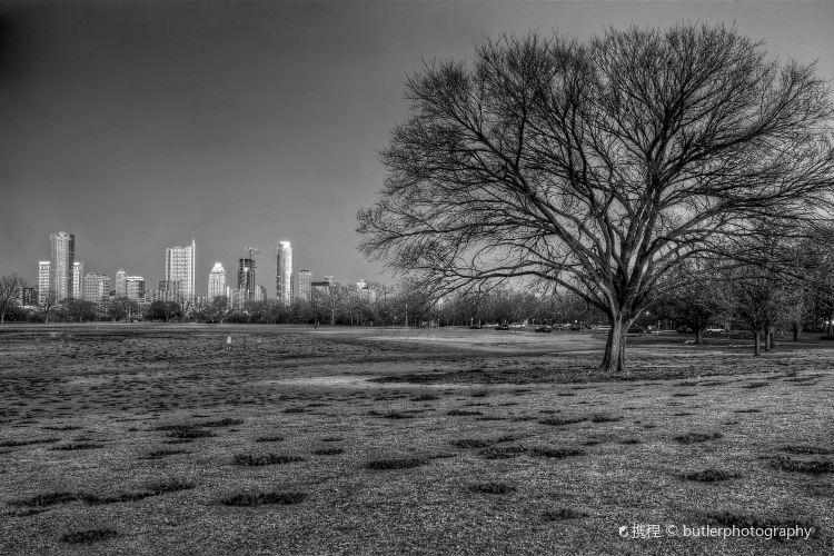 Zilker Metropolitan Park3