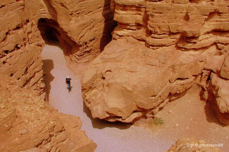 Red Canyon2