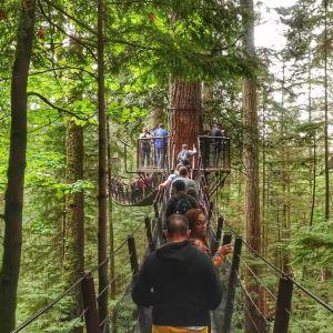 卡佩兰奴吊桥公园旅游景点攻略图