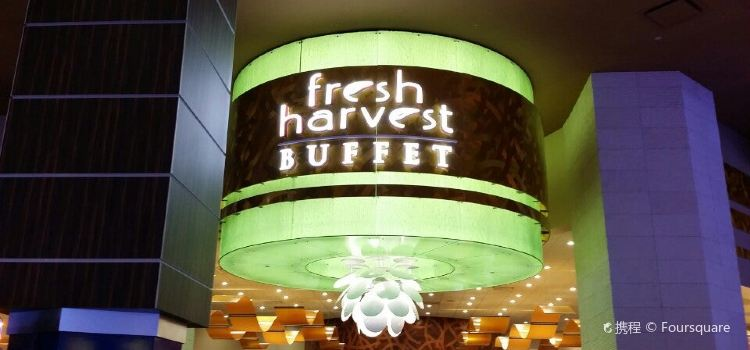 Fresh Harvest Buffet2