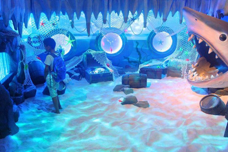Hippocampus Fantasy Aquarium