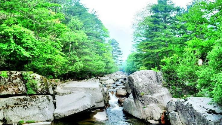 Tongtianhe National Forest Park (South Gate)