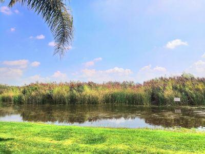 湖泉半山溫泉