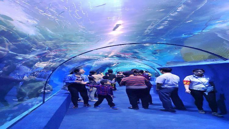 邯鄲海洋公園1