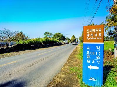 Mysterious Road (Dokkaebi Road)