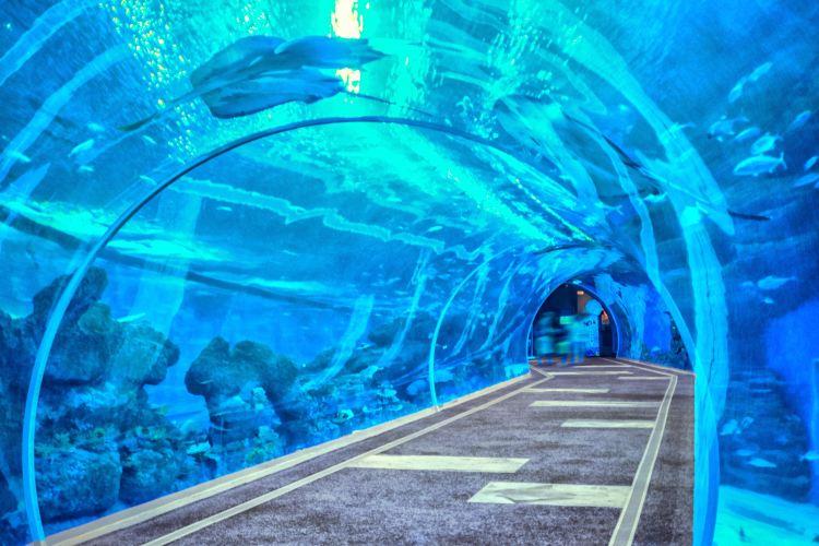 浩海立方海洋館