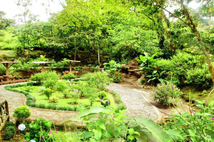 Lankester Botanical Garden3