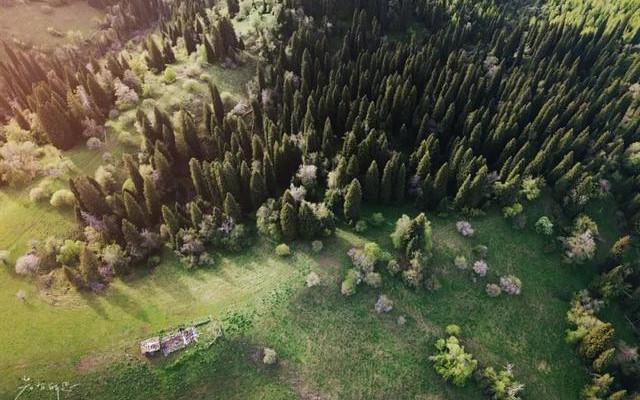 新疆那拉提最惊喜遇见,不是空中草原的无边花海,而是这里