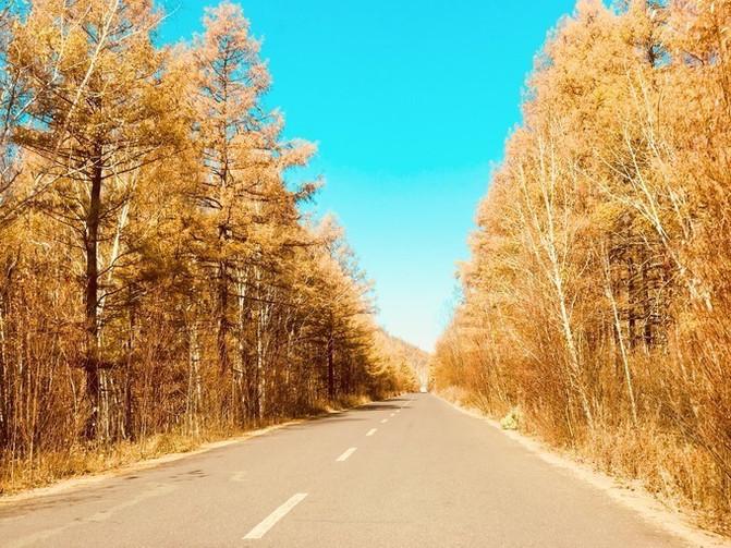 呼伦贝尔大草原 一万个人眼中有一万种呼伦贝尔大草原的秋 – 呼伦贝尔游记攻略插图30