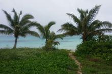 汤加游第八天:自驾环岛游Ha'apai岛
