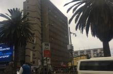 肯尼亚首都内罗毕在City center可看到鸟的城市