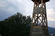 D8_2 木头城