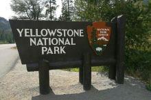美国自驾之黄石国家公园