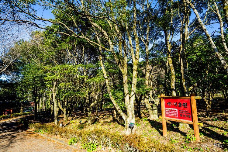 한라수목원2