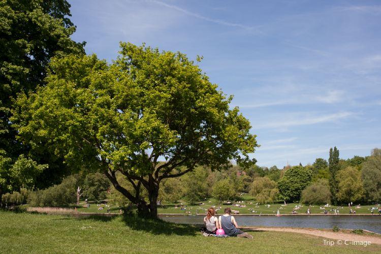 Hampstead Heath4