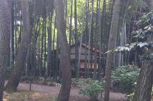 横滨三溪雨园