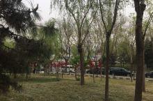 南长河公园的花儿之二 南长河公园是个闹中取静的地方,花的种类很多,附近居民的一个休闲放松的好去处。