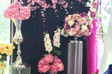多伦多花卉批发市场