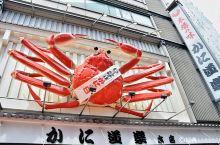 #冬日幸福感美食#给你一个帝皇蟹,你知道该怎么吃么?