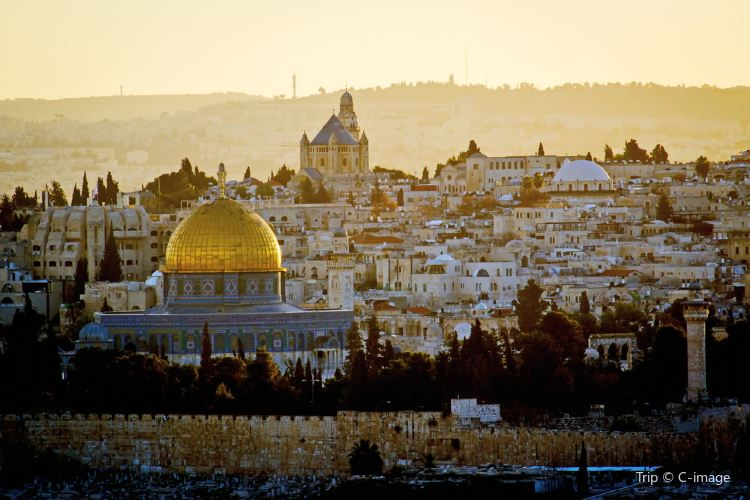 The Dome of the Rock4