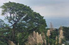 到博罗罗浮山看云雾缭绕的山林