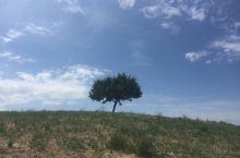 沙漠前的草原