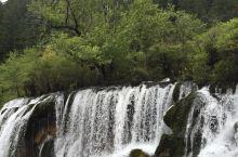 树正瀑布·九寨沟 奔腾而下 千川百溪 汇集于此