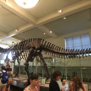 美国博物馆旅游景点攻略图