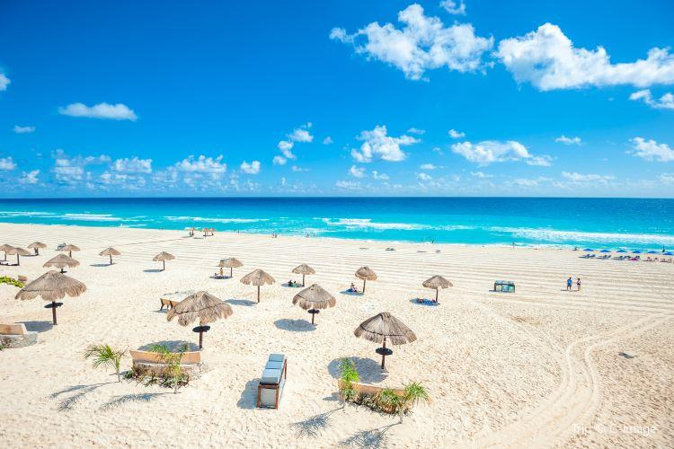 Playa Langosta1